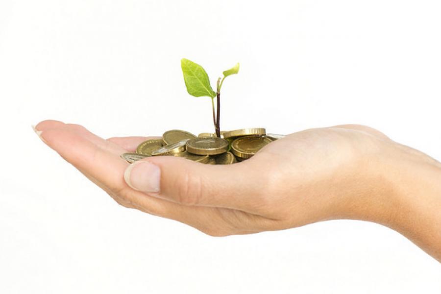 Should I Register My Company For VAT?